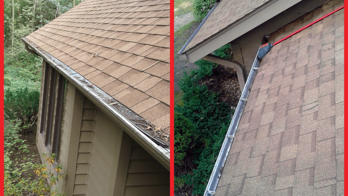 Gutter Cleaning in a Wooded Area